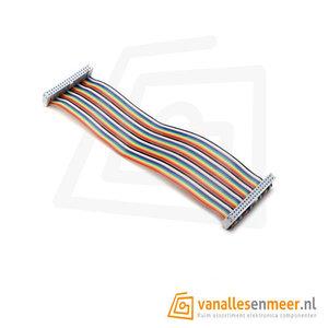 GPIO Flat cable 40P rainbow