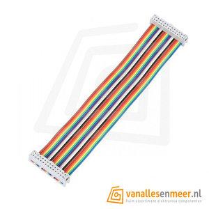 GPIO Flat cable 26P rainbow