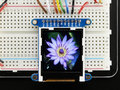 Adafruit-1.44-Color-TFT-LCD-Display-with-MicroSD-Card--Adafruit-2088
